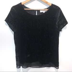 LOFT Velvet Lace Velour Semi-Sheer Blouse Top